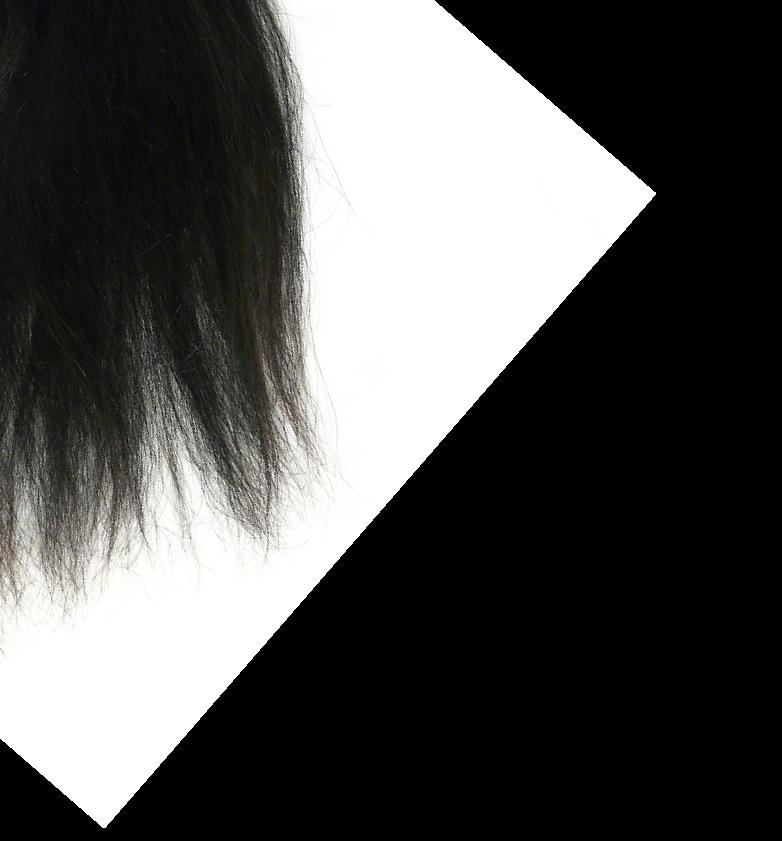 grootstaart-u2195